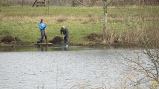 Daniel Pearce and Mac helping to net the fish